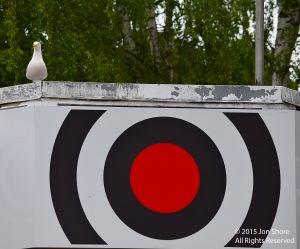 gull on target c7941
